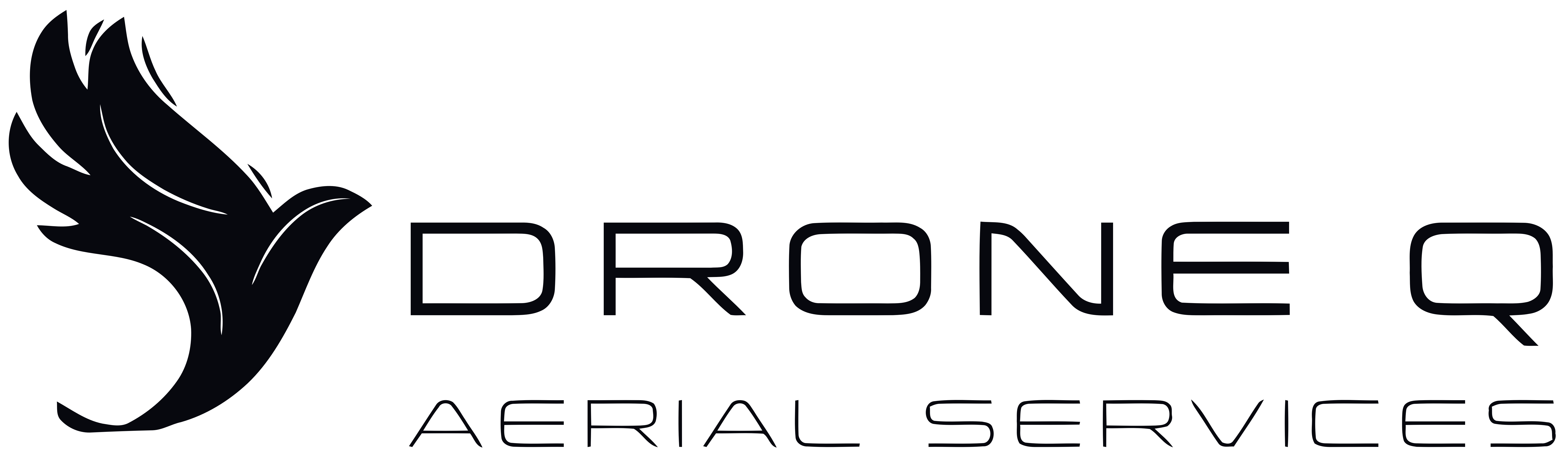 DroneQ Aerial Services